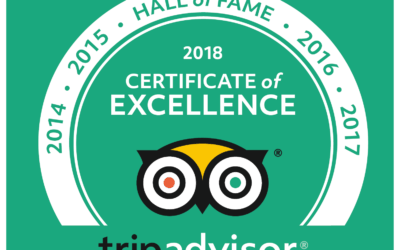 Vine Inn is in the Trip Advisor Hall of Fame