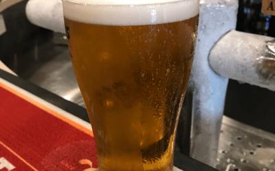 Confessions of a Beer Tragic